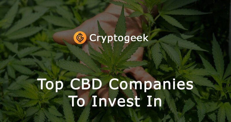 Top CBD Companies To Invest In